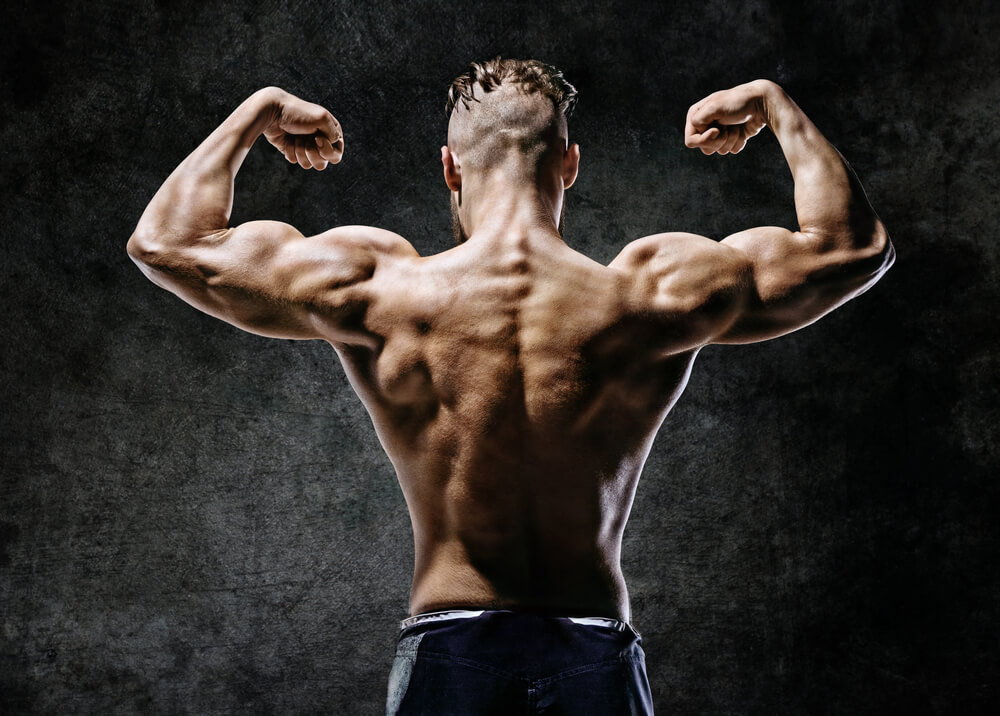 best back workout routine