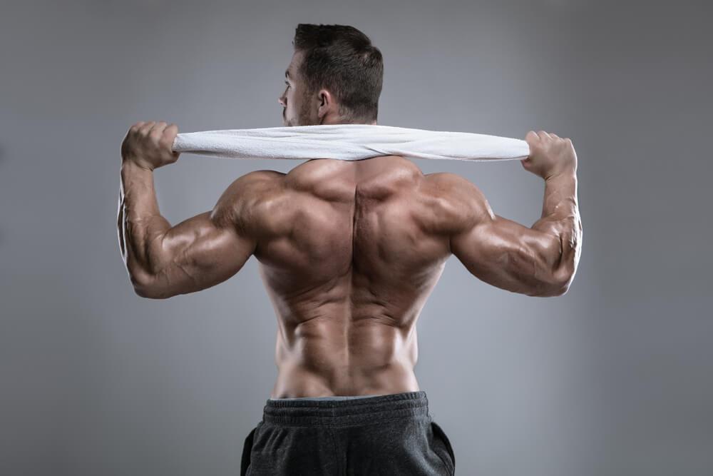 traps workout